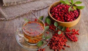Барбарис лечебные свойства. Рецепты настоя и соуса для мяса