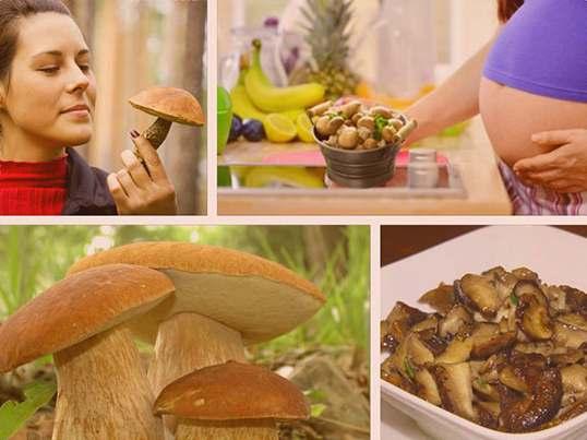 Можно ли беременным грибы