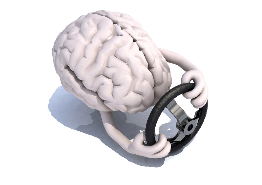 Мысли управляют мозгом, а мозг продуцирует мысли