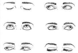 Круговые вращения глаз