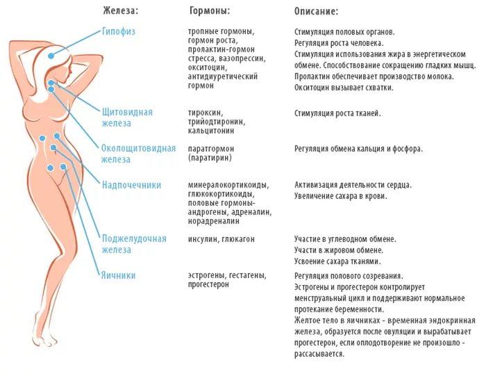 Гормональный сбой у женщин: симптомы, признаки. Задержка месячных и аменорея