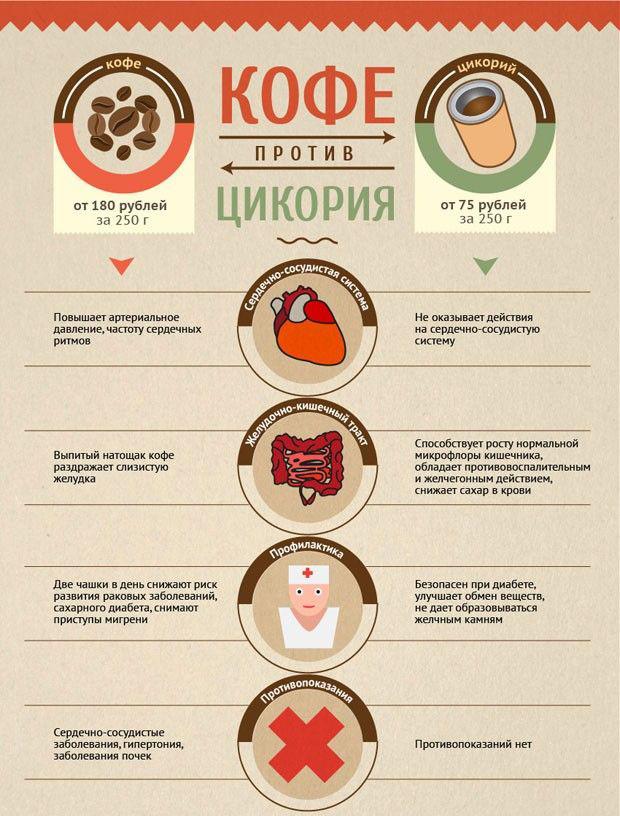 Цикорий растворимый: полезный напиток