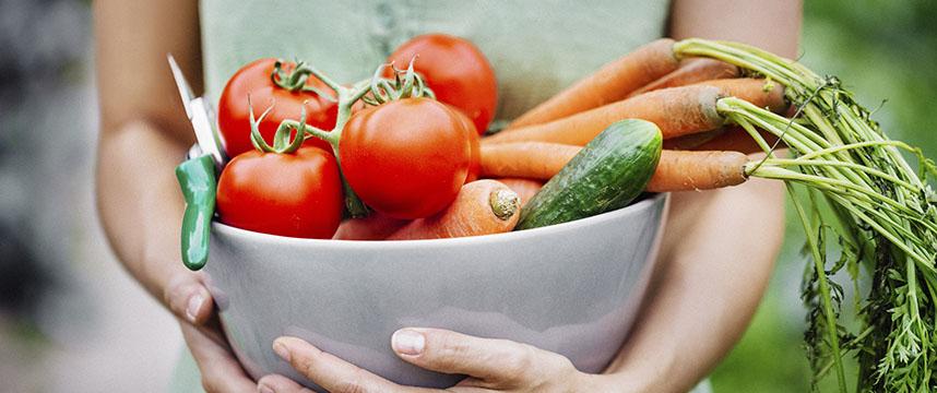Живая пища улучшает функцию зрительного аппарата