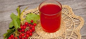 Калина. Полезные свойства, лечебные рецепты напитков и сладостей