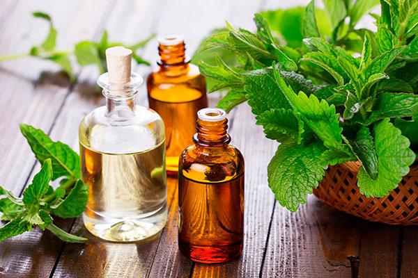 правила применения масла бергамота для волос
