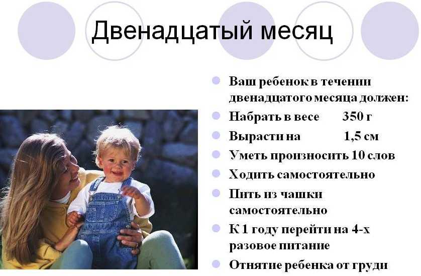 12 месяцев ребенку что должен уметь делать