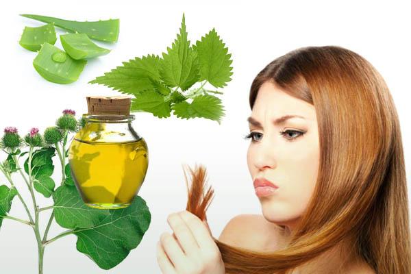 лучшие рецепты витаминных масок