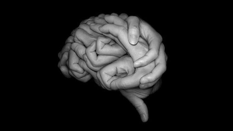 Зрительный центр располагается в мозге и поддается влиянию эмоций