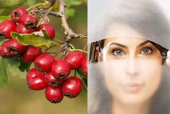 Здоровье и природа
