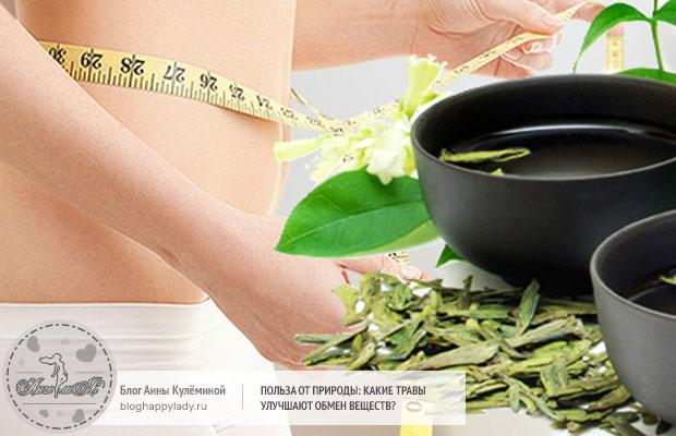 травы ускоряющие метаболизм