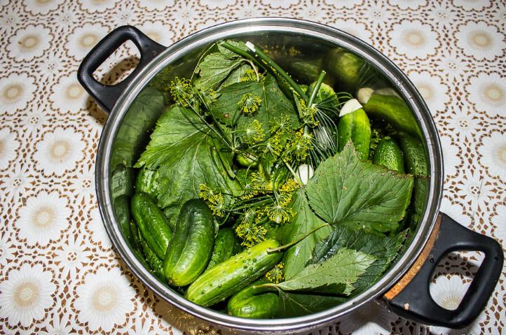 Малосольные и хрустящие огурцы в горячем рассоле: 4 рецепта