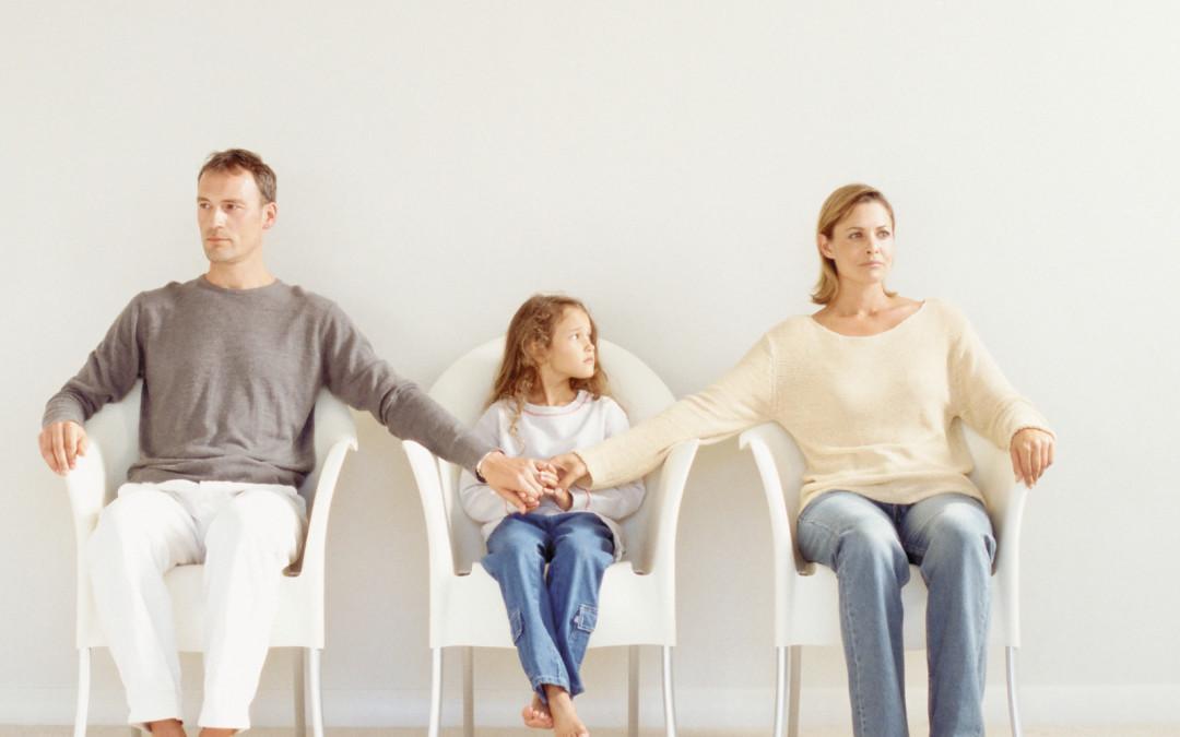 новосибирск семейные споры причины