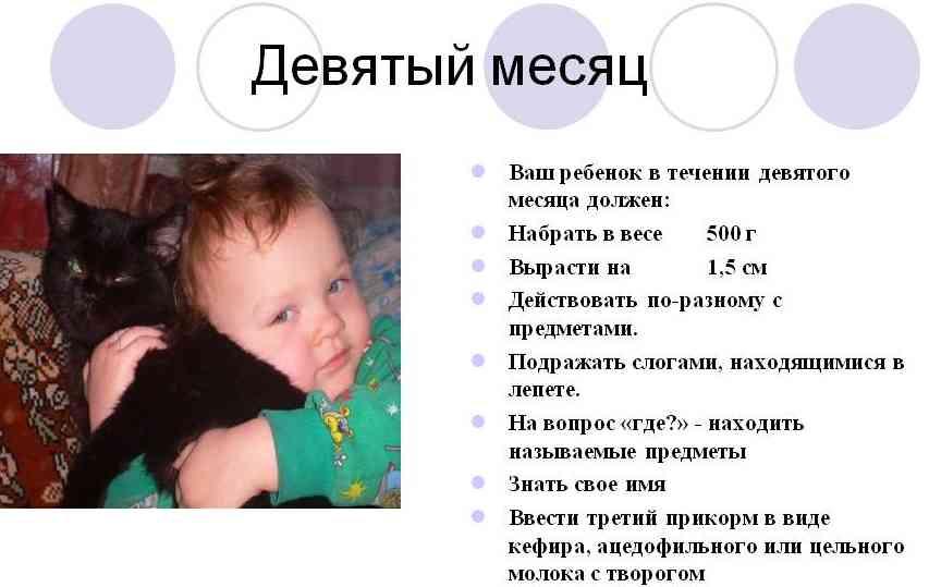 9 месяцев ребенку что должен уметь делать