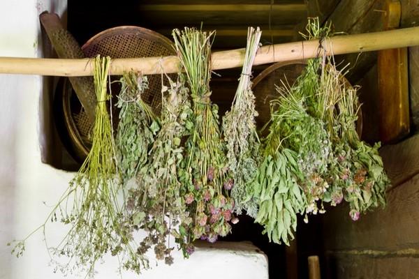 Пучки высушенных трав