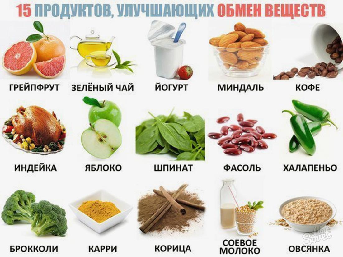 obmen-veshestv