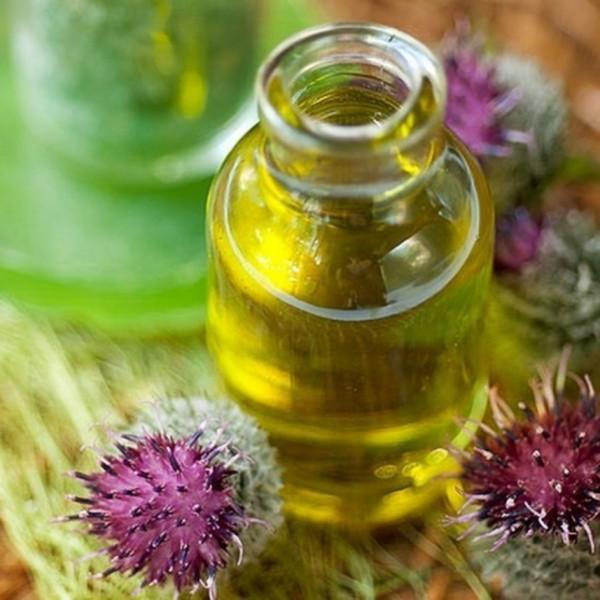 Цветы лопуха и бутылка с маслом