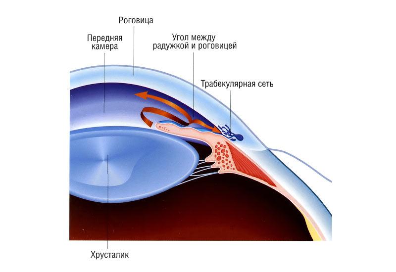 Поражение глаза при открытоугольной глаукоме