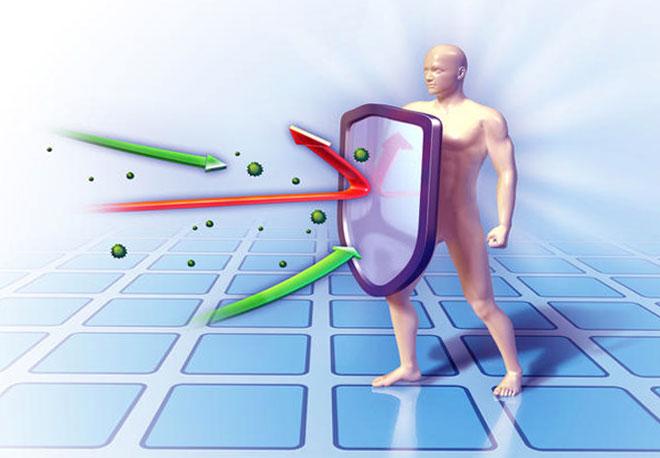Иммунная система важна для человека